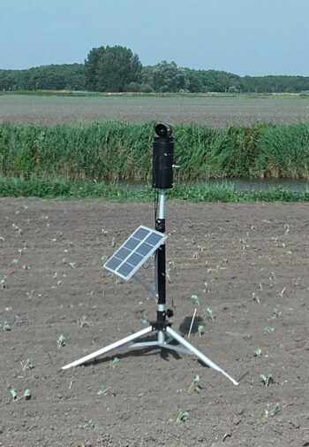 laser-ganzen-zonnepaneel-2-e1617129328270.jpg